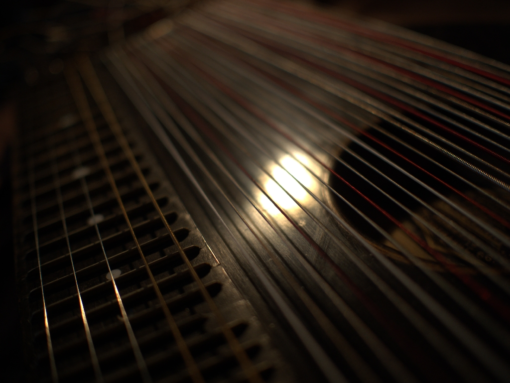 Zither 4